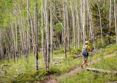 Colorado-Trail-2014_07_11_0004