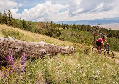 Colorado-Trail-2014_07_14_0042