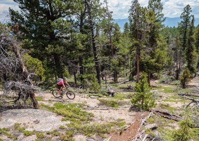 Colorado-Trail-2014_07_14_0132