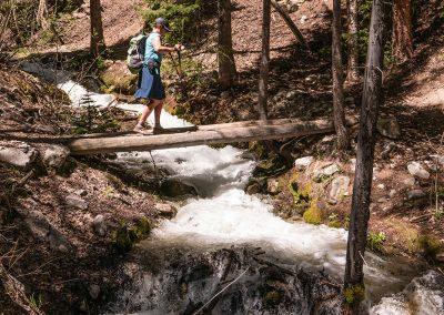 Colorado-Trail-2015_06_04_0010