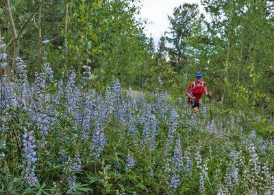 Colorado-Trail-2017_07_08_0029