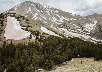 Avalanche Trail Gulch