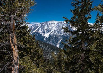 avalanche-trail-gulch-2015_03_30_0090
