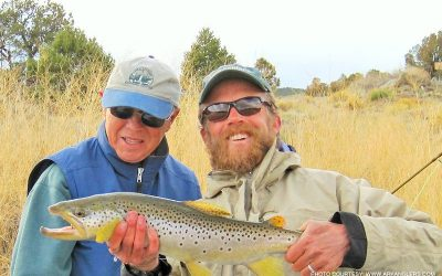 brown-trout-colorado-fly-fishing