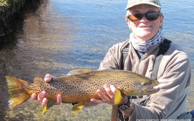 brown-trout-guided-fishing-colorado