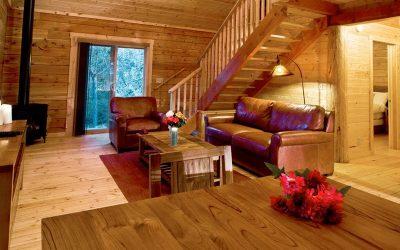 cabin-livingroom_0
