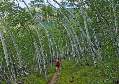 colorado-trail-2017_07_08_0042
