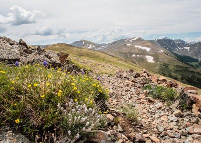 continental-divide-trail-2014_07_05_0081