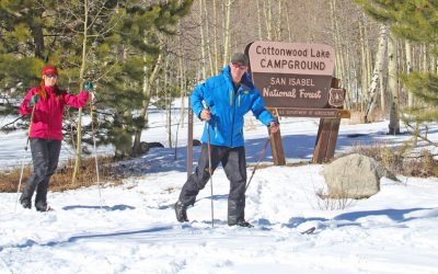 cross-country-skiing-trails
