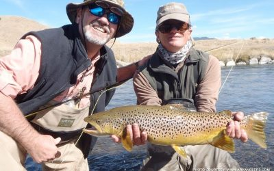 giant-brown-trout-guided-fishing-trip-arkansas-river