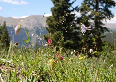 hiking-DSC_0159