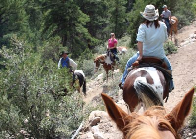 horseback-trail-ride