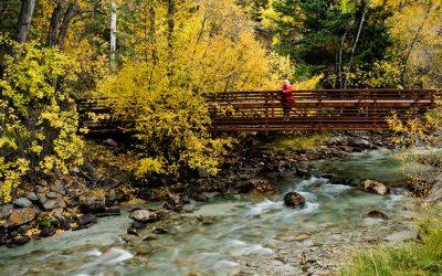 meadow-chalk-creek-bridge_0