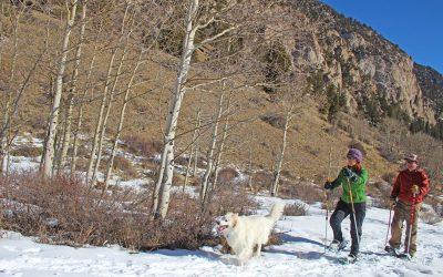 snowshoeing-colorado