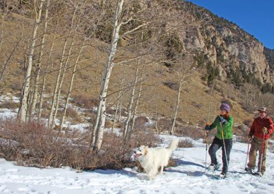 snowshoeing-colorado
