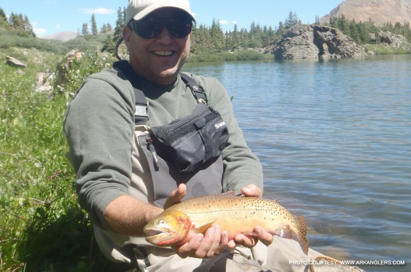 Fishing in colorado near buena vista salida colorado for Colorado trout fishing
