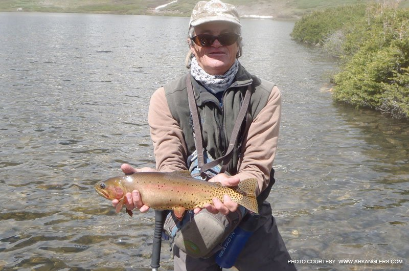 Fish a high lake near buena vista salida colorado for Trout fishing colorado